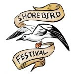 shorebird_festival