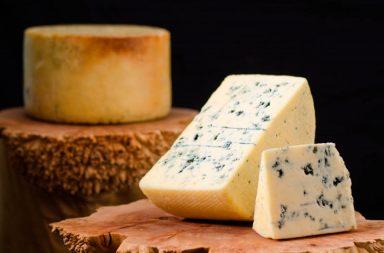 oregon cheesemakers