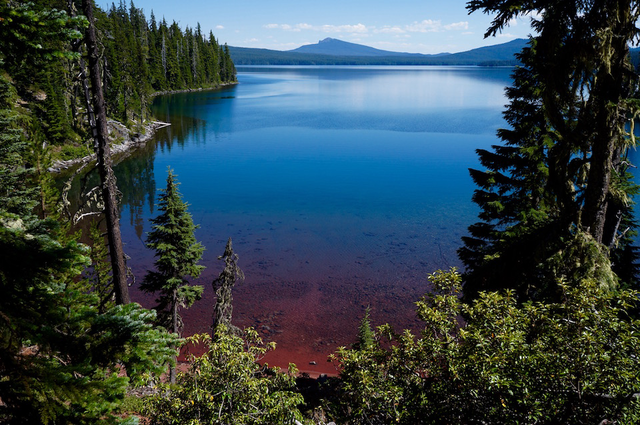 waldo lake, stephanie olson
