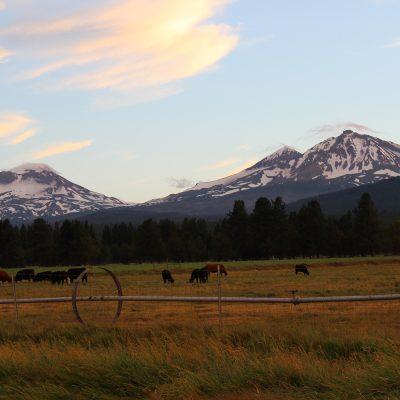 1859 Oregon Photography