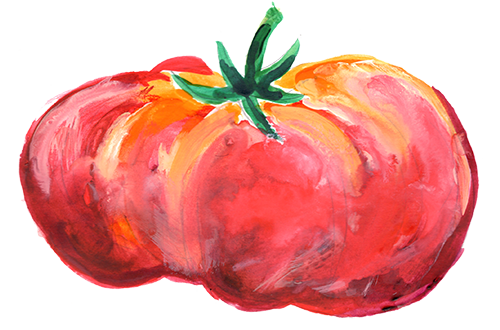 Oregon heirloom tomato