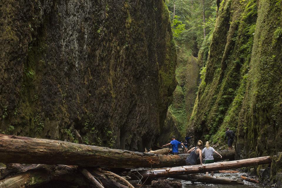 ben mcbee, oneonta gorge, canyon