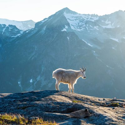 Respect  —Location: Alpine Lakes Wilderness