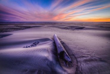 Oregon-Postcard_Shane-Cotee_630x400